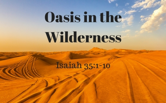 oasis-in-the-wilderness